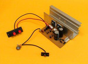 amplificador mono de 100W